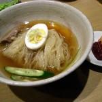 20090114tetsujin03