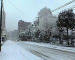 今日の仙台は大雪