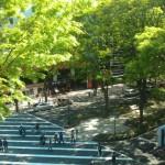 新緑の仙台・・・一番好きな季節
