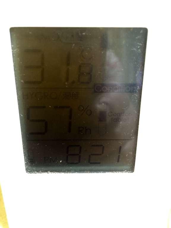 31.8度